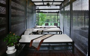 cong-ty-thiet-ke-noi-that-spa-2